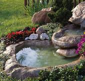 Verde vitali s r l prodotti per agricoltura ascom pesaro for Laghetti ornamentali