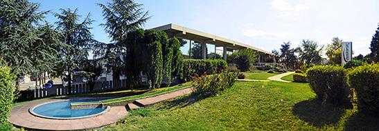 Cucchiarini - Vendita Materassi Memory - Ascom Pesaro